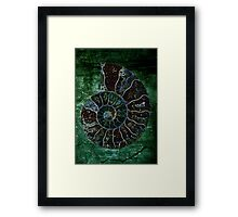 metal ammonite Framed Print