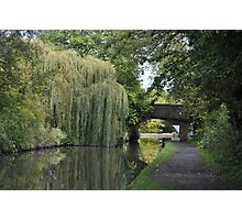 Green Canal Landscape Photographic Print