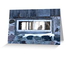 The Cat in the Window Greeting Card