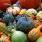 Gourds Galore by Ren Provo