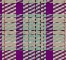 00773 Barra Fuschia Fashion Tartan Fabric Print Iphone Case by Detnecs2013