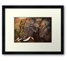 Africa - Ancient Giants Framed Print