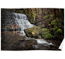 Falls on Betts Vale Track, Mount Wellington Poster