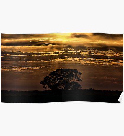 Hay Plains Sunrise Poster
