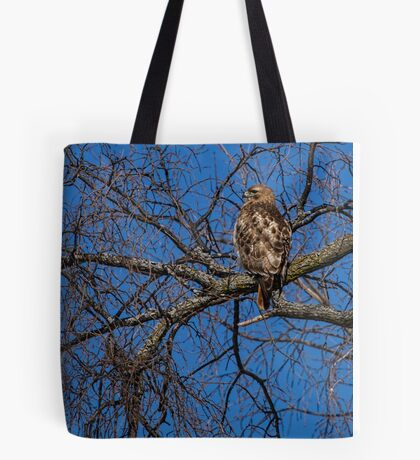 Adult Red-tailed Hawk Tote Bag