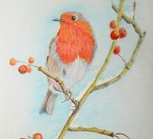 Robin among the Berries by Geraldine M Leahy