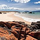 Cressy Beach, Tasmania by Tim Wootton