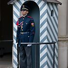 Czech Guard by phil decocco