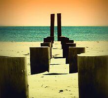 Beach Pylons by Sharon Woerner