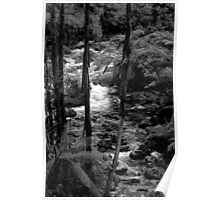 Taggerty River. Poster