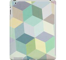 Nordic Combination 12 iPad Case/Skin