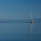 Sailboat on Calm Seas by CarrieCole