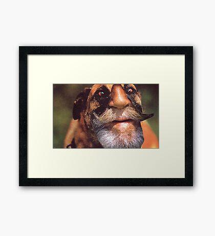 M Blackwell - Rough Framed Print