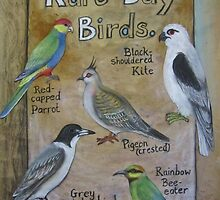Rare Day Birds by Thea T