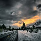 The Road Of Joy by Charles & Patricia   Harkins ~ Picture Oregon