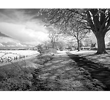 Mark, near Highbridge, Somerset Photographic Print