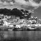 Looe Harbour by Antony R James
