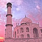 Taj Mahal Pink Sunset by David Alexander Elder