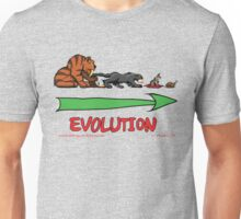 The Evolution of Kitteh Unisex T-Shirt