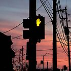 Red light stop by Chris  Hayworth