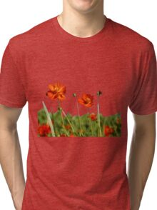 Red Cosmos Flower In A Meadow Isolated on White Tri-blend T-Shirt