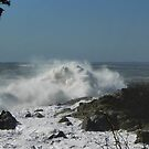 Wild Waves (2) by MaryinMaine
