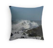 Wild Waves (2) Throw Pillow