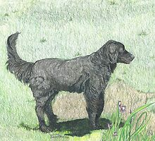 Black Lab by artistichamster