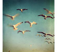 Dans avec les oiseaux Photographic Print