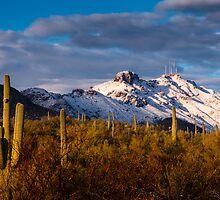 Arizona Mountains in Snow by RobTravis