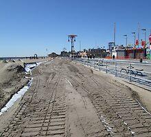 Coney Tracks by KarenDinan