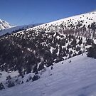 Ski mountain  by Clayt0n