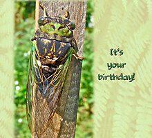 Birthday Greeting Card - Annual Cicada by MotherNature