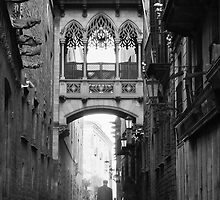 Barri Gotic, Barcelona by Stephen Knowles