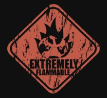 Extremely Flammable Kids Clothes
