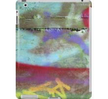 Color iPad Case/Skin