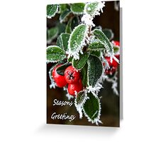 Frosty berries Greeting Card