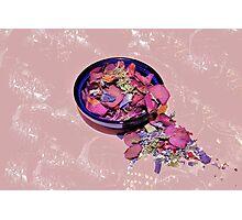 Lovely Lavender Photographic Print