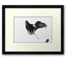 Trained Framed Print