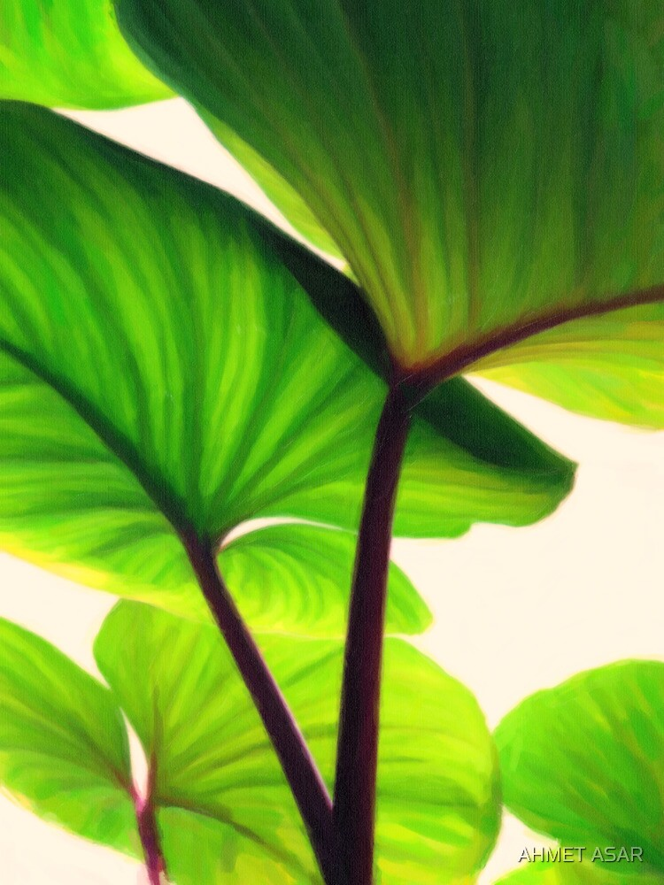 green canopy pastel by Adam Asar