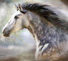 Spanish Beauty by Carol  Cavalaris