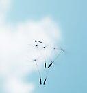 Falling from Heaven by Ingz