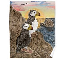 Puffins on Sunset Cliff Poster