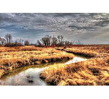 Lakefront  Photographic Print