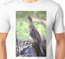 Ruffed Grouse Unisex T-Shirt