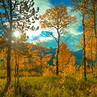 Morning Light in Fall by Joel Meaders