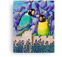 Black-faced Lovebirds Canvas Print