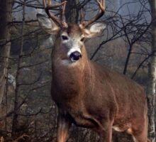 Buck on ridge - White-tailed Deer Sticker