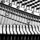 Piano Strings, Hammers &amp; Pegs by Laurie Minor