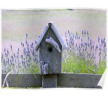 Lavender Farm Birdhouse Poster